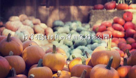 【2019年10月運用実績】100円から始める投資信託生活【楽天証券】