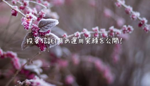 【2020年01月運用実績】100円から始める投資信託生活【楽天証券】