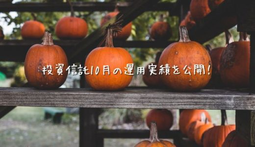 【2020年10月運用実績】100円から始める投資信託生活【楽天証券】