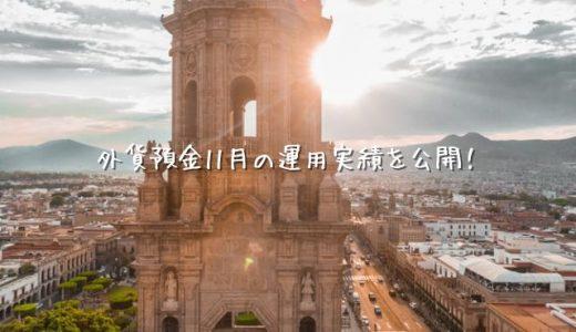 【2020年11月運用実績】外貨預金(スワップポイント)【メキシコペソ】